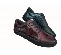 Zenska kozna cipela ART-1317A
