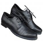 Zenske cipele ART-530