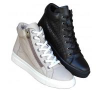 Zenske kozne cipele ART-129