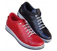 Kozne cipele ART-8638
