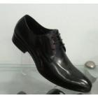 Muške cipele 339-51
